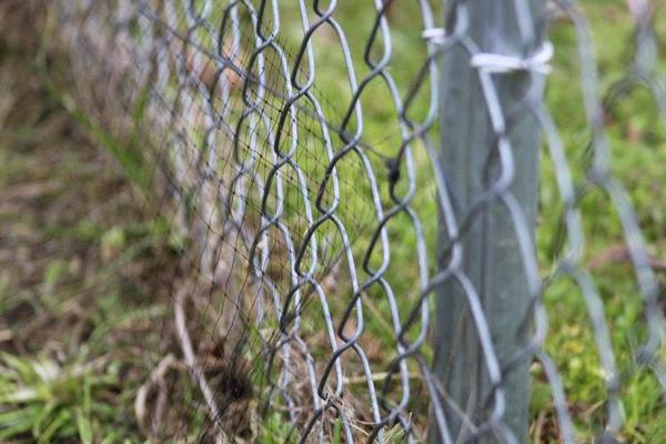 Snake-Prevention-Fence-Lake-Charles-LA